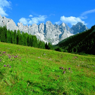 Val Venegia - Under the Pale di San Martino (Dolomites)