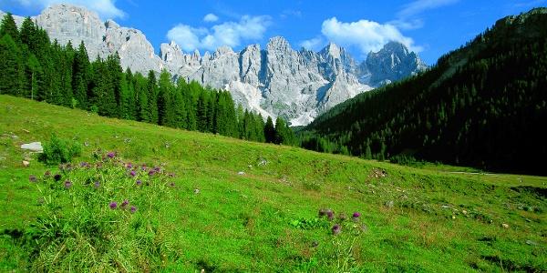 Val Venegia - Am Fuße der Dolomiten Pale di San Martino