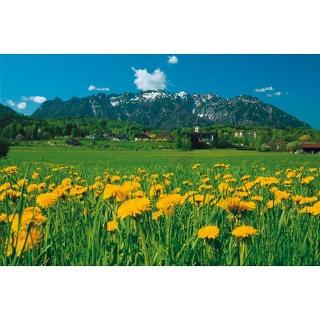 Marzoll mit Lattengebirge