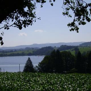 Herrlicher Ausblick: Der Blick schweift über den Badsee.