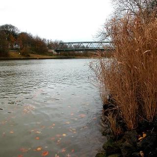Der Wesel-Datteln-Kanal bei Hardt.