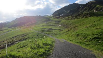 Weg zur Vorderkapellalpe