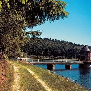 Wir fahren an zahlreichen Teichen und Seen vorbei.