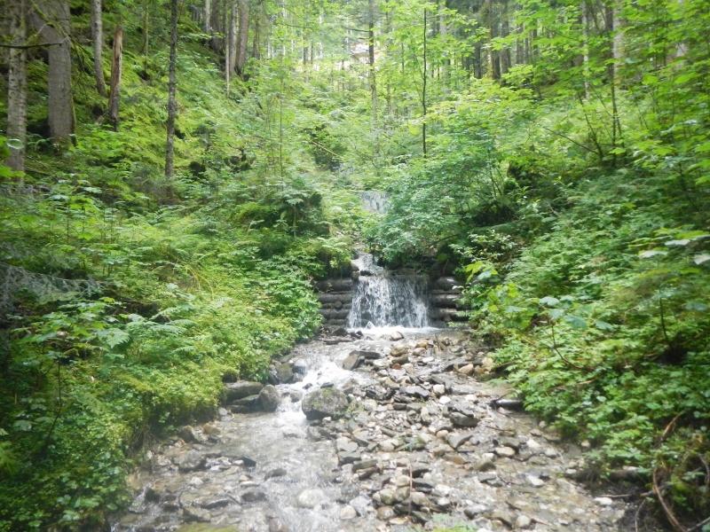 Schmaler Bach mit kleinem Wasserfall