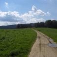 Der Weg führt uns über saftige Wiesen und an Wäldern vorbei.