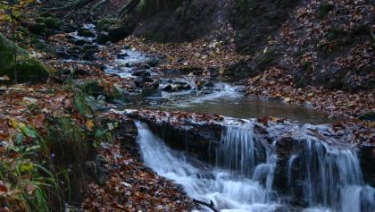 Herbst in der Kaskadenschlucht