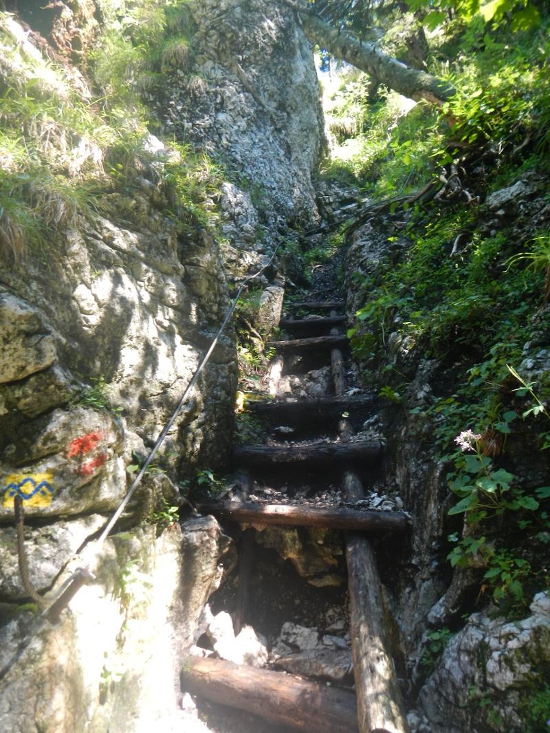Holztreppe bei Aufstieg auf den Predigstuhl