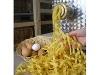 Nudeln werden für Kilb's Bauernladen selbst gemacht   - © Quelle: Kilb's Bauernladen