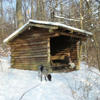 Schutzhütte bei Borchen-Etteln