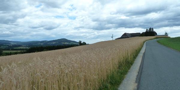 Elmleitentour kurz vor Birkfeld