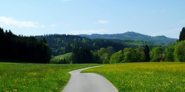 Zuckmayer Radweg bei Wertheim