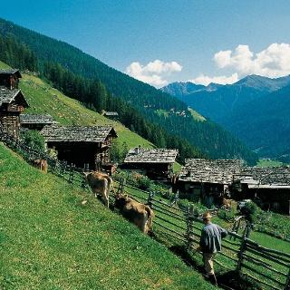 Bergbauernhöfe bei St. Gertraud im Ultental.