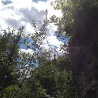 Blick vom Denzlerweg hinauf zur Plattform auf Uto Kulm