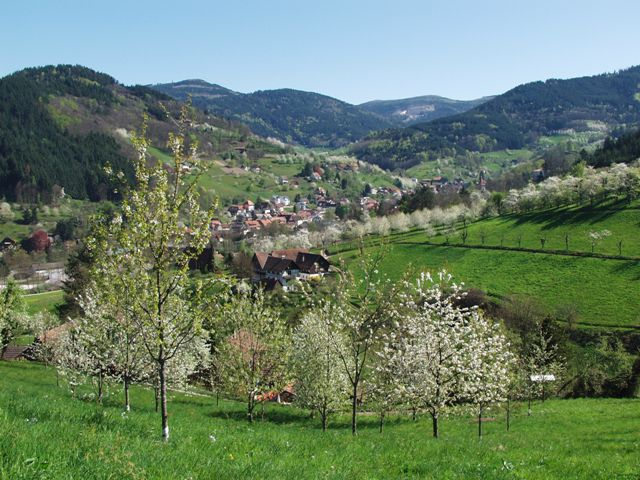 Das Achertal - Von der Badischen Weinstraße zur Schwarzwaldhochstraße