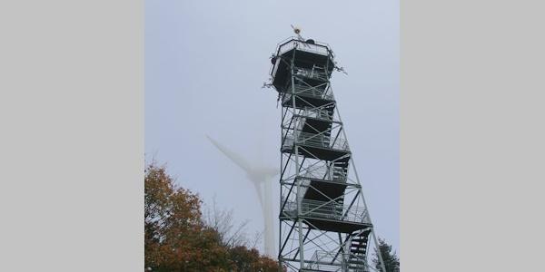 Der Blick vom Aussichtsturm Roßkopf lohnt den kurzen Aufstieg.
