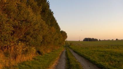 Auf schöner Strecke geht es von Alt Bukow nach Neuburg.