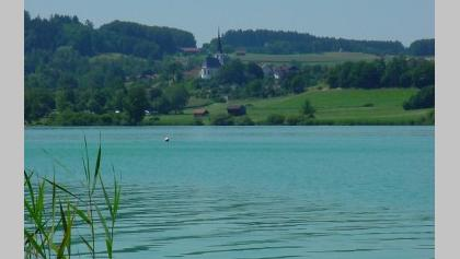 Tachinger See