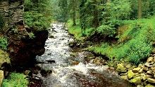 Das Schwarzwassertal