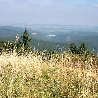 Die Landschaft bei Oberhof ist wunderschön.