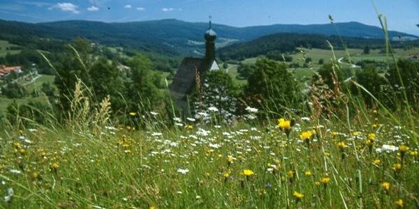 Die Wallfahrtskirche St. Leonhard erreichen wir nach einem steilen Anstieg.