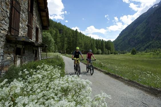 Bike tour Täsch - Randa - Täsch (Nr. 31)