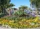 Das Klima der Bodensee-Region bringt reiche Blumenpracht hervor. / Quelle: