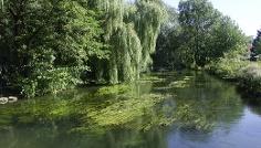 Die Sempt ist nicht nur ein beliebtes Fischgewässer, sondern auch als Wanderfluss bei Kanuten gefragt.