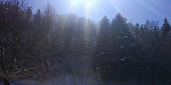 Bei herrlichem Sonnenschein begeben wir uns hinauf zur Jocheralm.