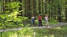 Nordic Walking 1 - Grönenbacher Wald - Bad Grönenbach