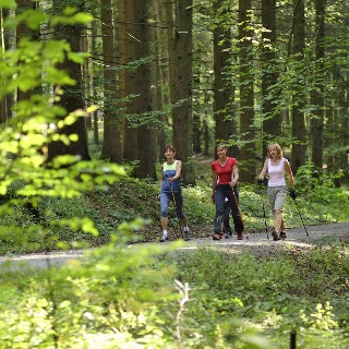 Nordic Walking in Bad Grönenbach.