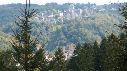 Blick zurück auf Schloss Burg