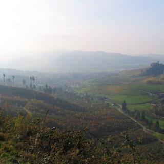 Ein Blick zurück auf Weisenbach und Meisengrund, Weinberge und Wald.