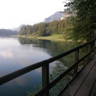 Der Weg am Westufer des Alpsees.