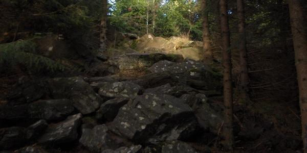 Kurz vor dem Gipfel durchsteigen wir eine felsige Passage.