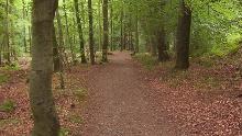 Sportabzeichen-Strecke Bad Harzburg