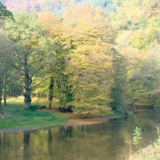 Eine wunderbare Wanderung für den Herbst.