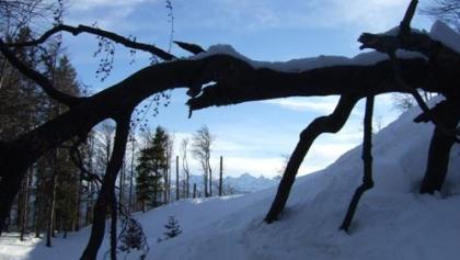 Auf der idyllischen Skiroute