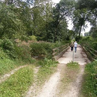 Im Auwald queren wir diese Holzbrücke.