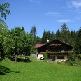 Zum Hof Gröllerhaus gehört auch eine Pferdezucht.