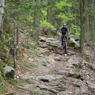 Downhill nach Thalkirchdorf