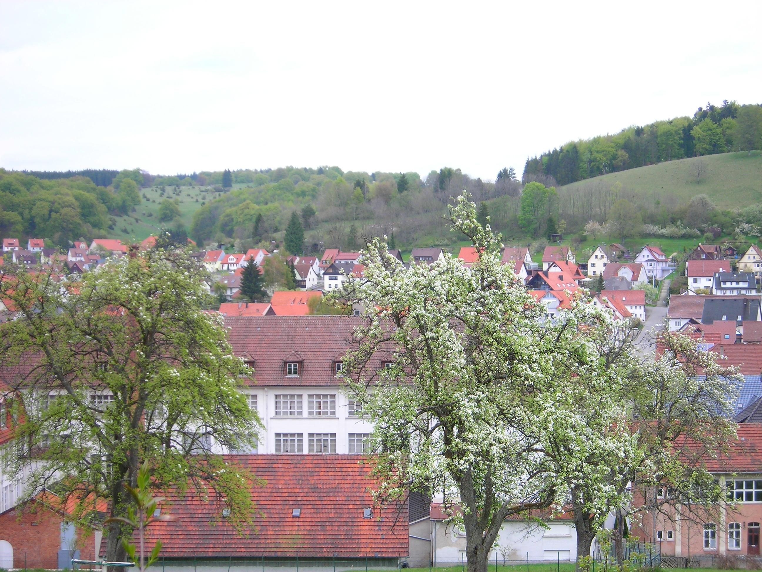 Blick auf Ringingen.