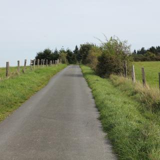 Weg zum Laubus