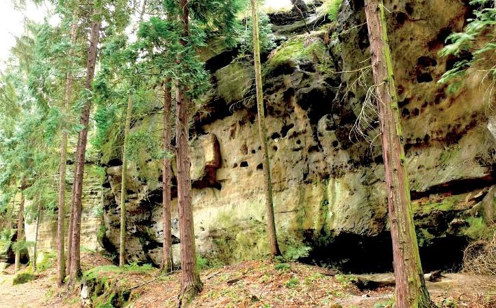 Foto Typisch für die Region ist der zerfurchte und zerklüftete Sandstein