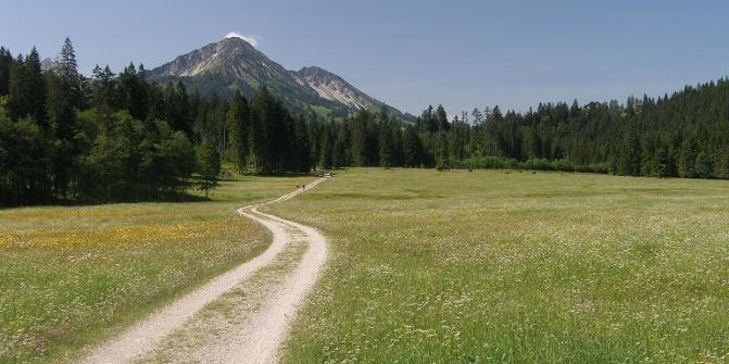 Phantasische Ausblicke auf die österreichischen Alpen begleiten uns auf unserer Tour.