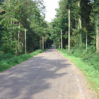 Krechtinger Straße