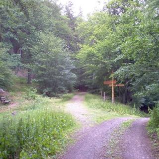 Dieser Weg führt uns abseits der Touristenströme.