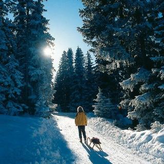 Dem Rodelspaß geht eine stille Winterwanderung voraus.