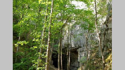 Der Weg zur Falkensteiner Höhle.