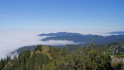 Blick über das Schwarzeck auf die herbstliche Wolkendecke über dem Alpenvorland