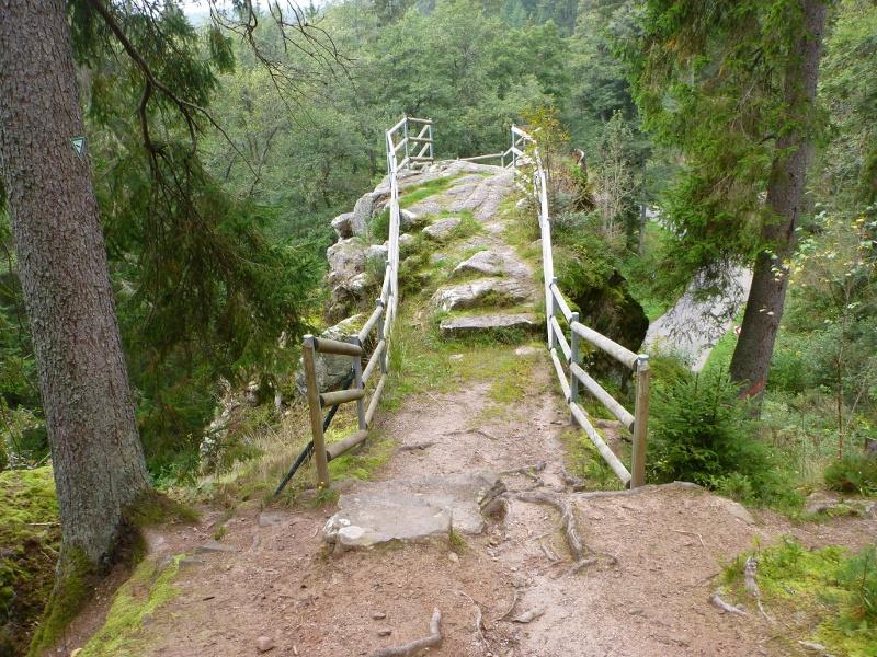 Waldpfad Groppertal (Premiumweg)
